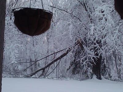 Snow storm in Burtonsville, Maryland