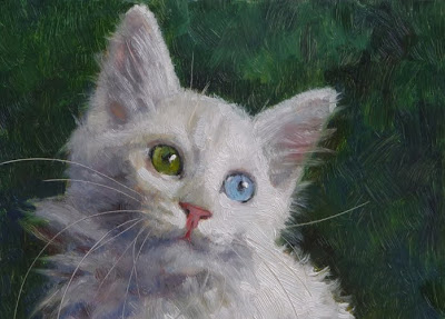"Turkish Angora Kitten, 5"" x 7"""