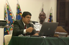 ANISTIA: ANALISE DO PROJETO DE LEI PARA REGULARIZAR ESTRANGEIROS ILEGAIS NO BRASIL