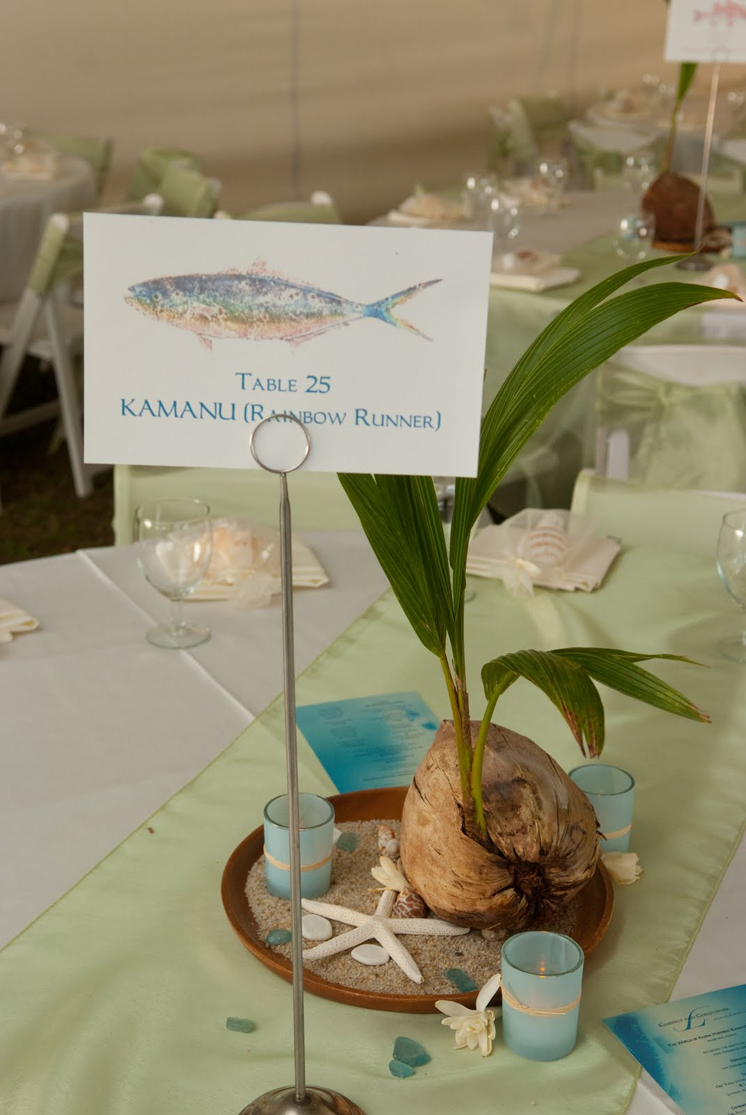 Ideas for Fishing Themed Reception