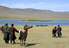 Adventures in Mongolia