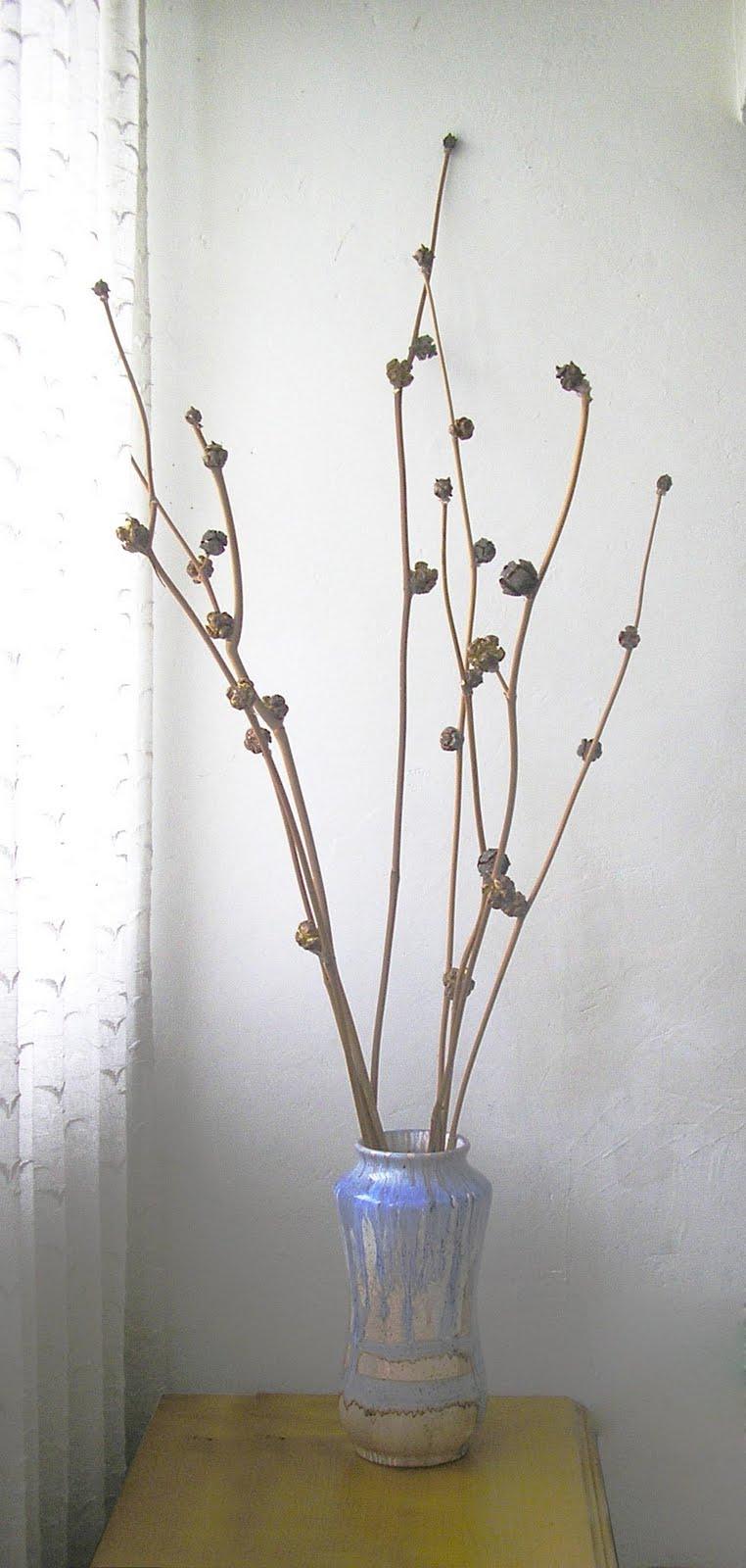 Badulake de ana arreglo con ramas secas facil n facil n - Centros de mesa con pinas secas ...
