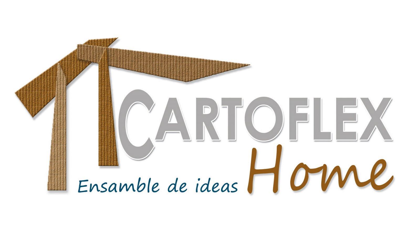 cartoflexhome 2009