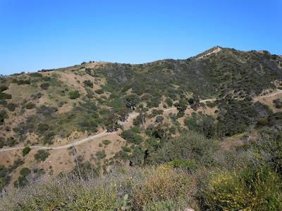 Runyon Canyon Trail May 2010