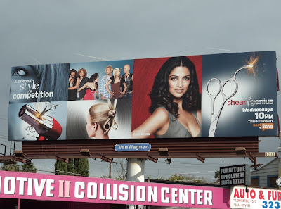 Shear Genius Bravo TV billboard