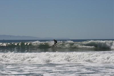 Surfing waves in Santa Barbara