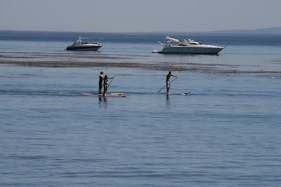 Standup paddling in Malibu