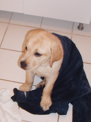 Am I dry yet?