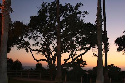 Santa Monica Palisades Park at dusk