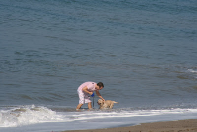 Cooper getting used to the Pacific Ocean - he's such a good puppy