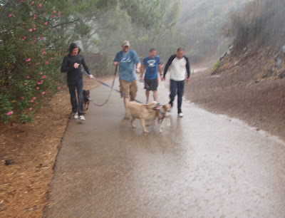 Rainy Runyon Canyon dog park