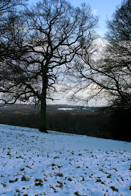 Snowy Crowborough in winter