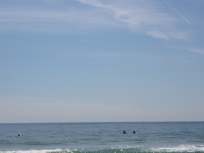 Dolphin fin and surfers at Zuma Beach in Malibu