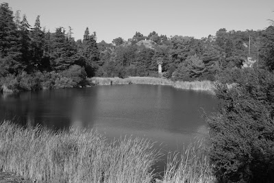 Franklin Canyon Upper Reservoir in mono