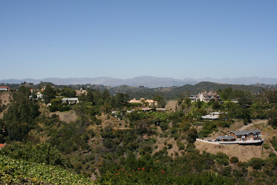Bel Air hillside view