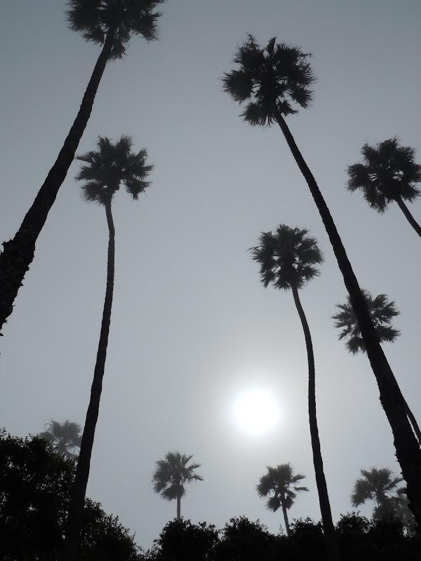 Foggy Santa Monica September