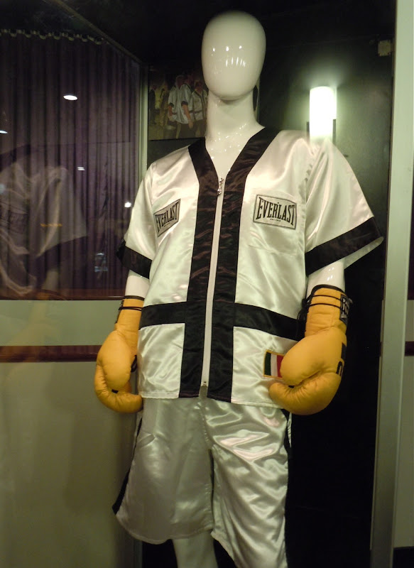 Mark Wahlberg's The Fighter boxing costume