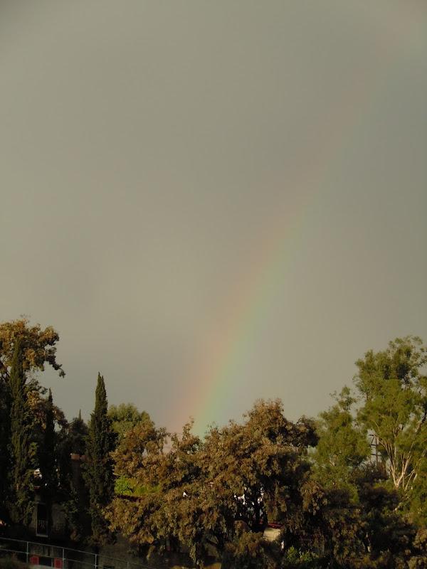 Rainbow Hollywood Hills