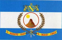 Bandeira da Vitória de Santo Antão