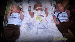 My triplets