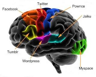 http://2.bp.blogspot.com/_GKewhESzpVY/TMSx-j3R6UI/AAAAAAAAFm4/uXw0X9Vvx6c/s200/brain_cortex.jpg