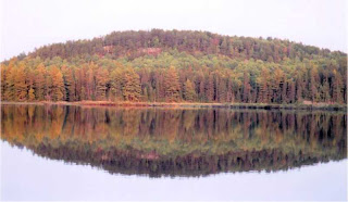 Autumn trees reflecting in water at Algonquin Park.