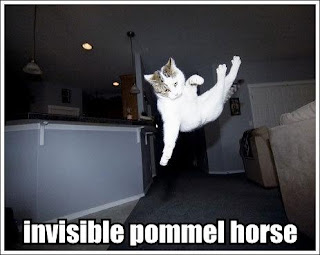 http://2.bp.blogspot.com/_GMdPyeNEG0I/RyQlmxo0IBI/AAAAAAAAACA/e2Od5IBszI4/s320/invisible-pommel-horse.jpg