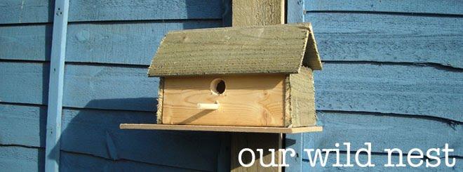 Our Wild Nest