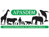 APASDEM