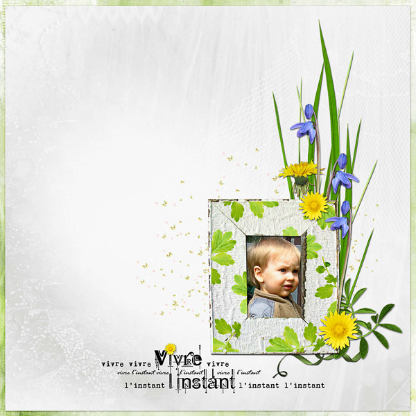 http://2.bp.blogspot.com/_GRmMV4fbP0M/S_pEWC-pVDI/AAAAAAAAAXc/tSkAUE7GQ5E/s1600/lilibule_time_flowers_1.jpg