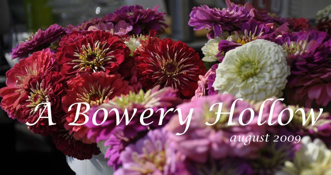 A Bowery Hollow