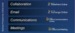 Microsoft BPOS Services