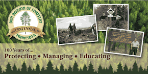 MN DNR Forestry
