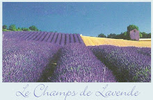 fields of lavender