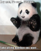 Labels: All Funny Pictures, Funny Animals (funny pictures panda will let you take the bamboo)