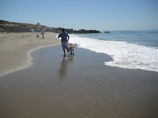 Running in the sand with the dog