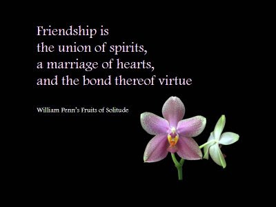 quotes about friendship and love. quotes about friendship and