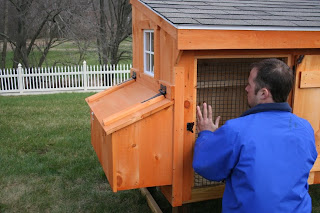 Miniature Chicken Coops