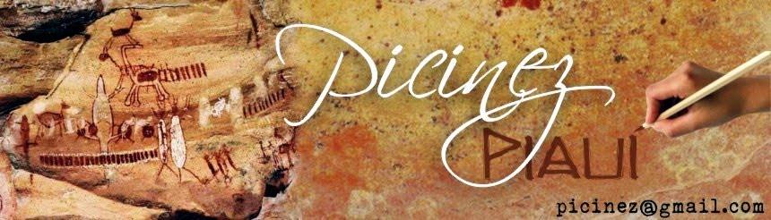 PICINEZ - Piauí