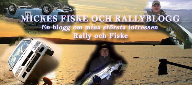 Team Rally - Micke Lindh