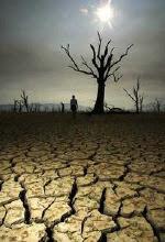 Cinco formas de salvar el Planeta