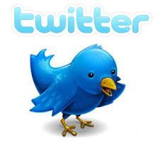 Porque está ganando tanto empuje el Microblogging Twitter