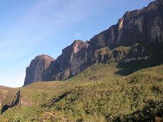 Incendio en Tepuy Roraima Parque Nacional Gran Sabana