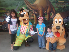 The gang w/ pluto n goofy