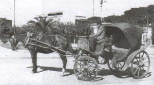 El Mateo - Siglo XIX - hasta 1950/ 60 - Aun circulan en algunos paseos de Bs. Aires