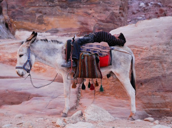 La siesta en Petra
