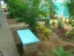 vista de jardineras y plazas