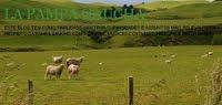 Blog La Pampa Gaucha