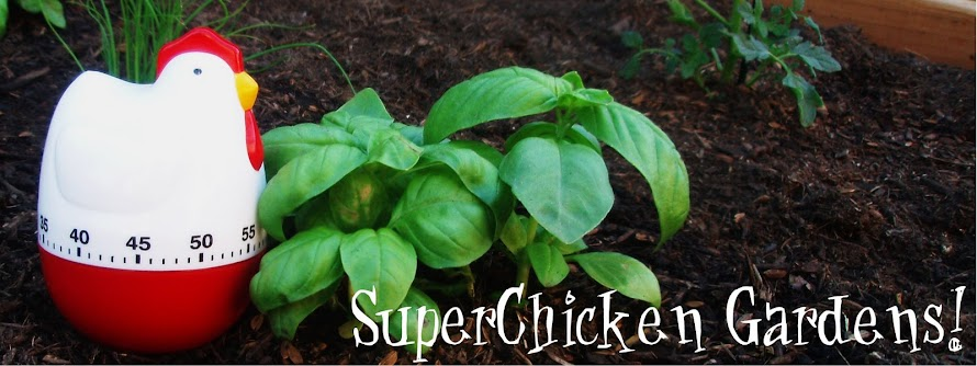 SuperChicken Gardens!