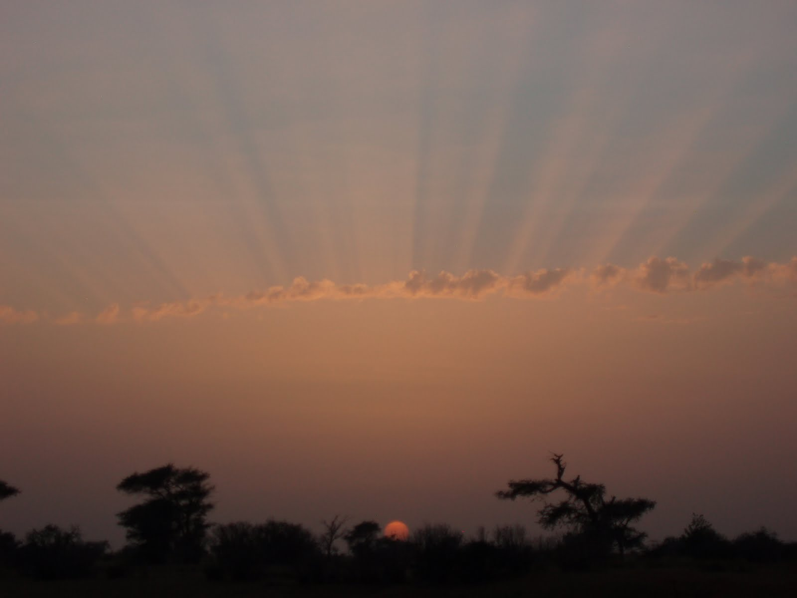 African Sunset - Edge of Sahara, Senegal, West Africa 2009
